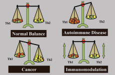 Exclusive – A New Strategy for Immunotherapy of Cancer