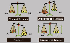 The immune system is maintained in a carefully regulated balance between the two polarised control arms, Th1 (cellular immunity) and Th2 (humoral immunity). In disease states the balance is skewed such that the immune picture of autoimmune disease patients, such as multiple sclerosis, rheumatoid arthritis and type I diabetes, have a Th1 bias, whereas cancer patients have a Th2 bias. Immunotherapy strategies aimed at boosting the immune system of cancer patients serve to enhance the dominant Th2 response that failed to eradicate the tumour. Therapeutic cancer vaccines need to be designed with an immunomodulatory mechanism which is capable of converting a resident Th2 dominant immune response in cancer patients to a Th1 dominant immune response.
