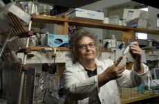 Prof. Eliora Ron