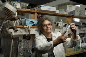Prof. Eliora Ron (Photo: Koby Kalmanovich)