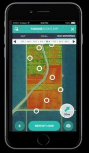The Taranis app lets the farmer input daily observations to fine-tune the predictive capabilities. (Photo: courtesy Tatanis/Israel21C)